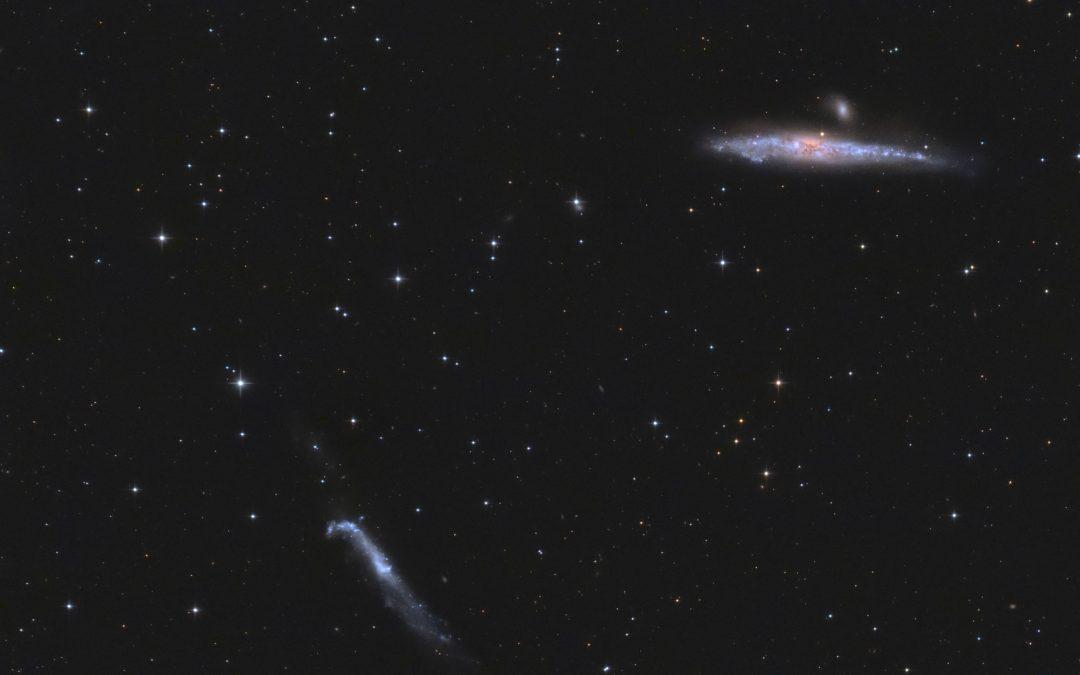 NGC 4631 4656